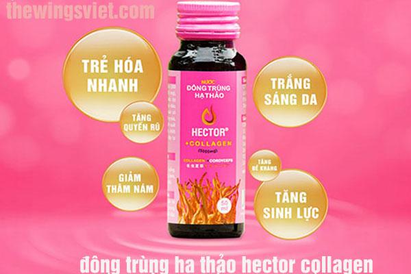 """Hector collagen có phải """"thần dược"""" của phái đẹp?"""